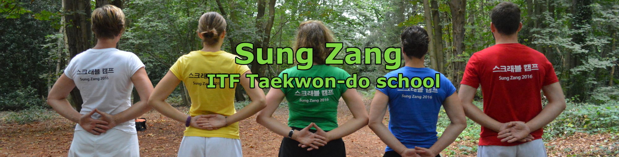 Sung Zang